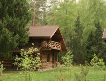 Романов лес 3